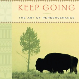Keep Going: The Art of Perseverance audiobook