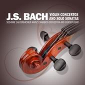 Susanne Lautenbacher, Mainz Chamber Orchestra And Günter Kehr - Concerto No. 2 in E Major for Violin and Strings, BWV 1042: I. Allegro