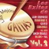 Las Mejores Gaitas, Vol. 2 - Various Artists