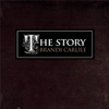 The Story - Brandi Carlile mp3