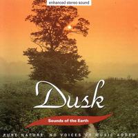 Sounds of the Earth - Dusk artwork
