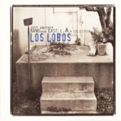 Los Lobos - What's Going On [Live at The World Music Theatre, 1992]
