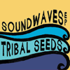 In Your Eyes - Tribal Seeds
