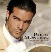 Pablo Montero - Hay otra en tu lugar
