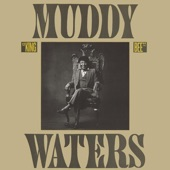 Muddy Waters - Mean Old Frisco Blues