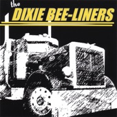 The Dixie Bee-Liners - Brown-Eyed Darlin'