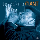 James Cotton - Heard You're Getting Married