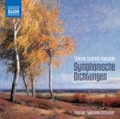 Leipzig Symphony Orchestra/Thomas Schmidt-Kowalski - Impressionen, Op. 101: I. Andante con moto