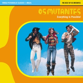 World Psychedelic Classics 1: The Best of Os Mutantes: Everything Is  Possible (with Unreleased Tracks) by Os Mutantes
