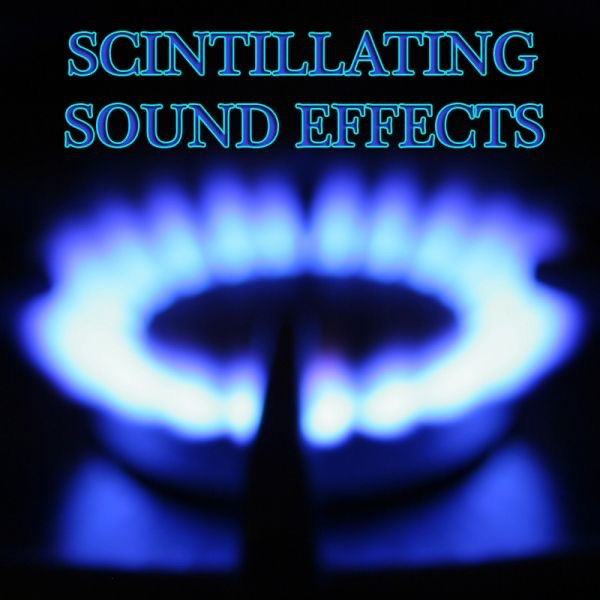 ‎300 Sound Effects by Sound Effects Library