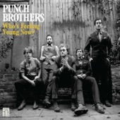 Punch Brothers - Moonshiner