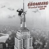 David Bromberg - Danger Man