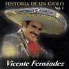 Vicente Fernández - Mi Víejo ilustración