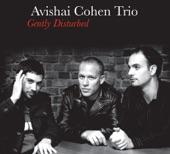 Avishai Cohen Trio - Pinzin Kinzin