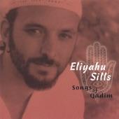 Eliyahu Sills - Patdeep Groove