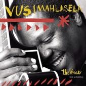 Vusi Mahlasela - Emtini Wababe