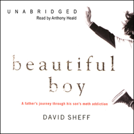 Beautiful Boy: A Father's Journey through His Son's Meth Addiction (Unabridged) audiobook