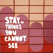 Things You Cannot See artwork