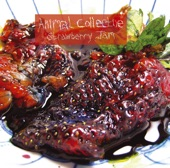 Animal Collective - #1