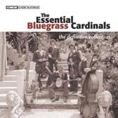 The Bluegrass Cardinals - Knee Deep In Lovin' You