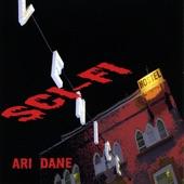 Ari Dane - Two Guitars in Different Bars (Inst)