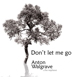 Dont Let Me Go Single Van Anton Walgrave Op Apple Music
