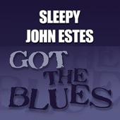 Sleepy John Estes - Broken Hearted, Ragged and Dirty Too