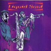 Liquid Soul - Java Junkie