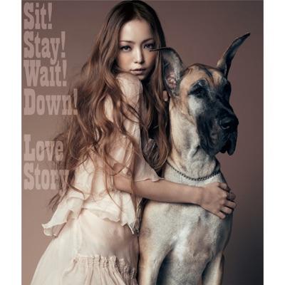 Sit! Stay! Wait! Down!/Love Story - Single - Namie Amuro