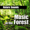 Wherever It Takes Me - Relaxing Bird Calls - Nature Sounds