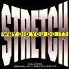 Stretch - Why Did You Do It (Original Mix) artwork
