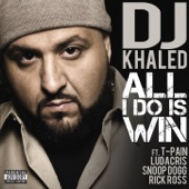 All I Do Is Win (feat. T-Pain, Ludacris, Snoop Dogg & Rick Ross) artwork