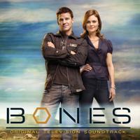 Various Artists - Bones (Original Television Soundtrack) artwork