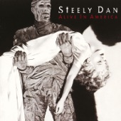 Steely Dan - Book of Liars (Live)