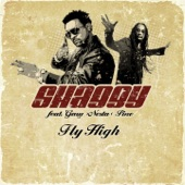Fly High (feat. Gary Nesta Pine) - Single
