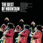 Mountain - Boys In The Band (Album Version)