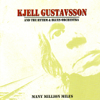 Kjell Gustavsson & The Rythm & Blues Orchestra - Sort Things Out artwork