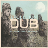 Evolution of Dub, Vol. 6 - Was Prince Jammy an Astronaut?