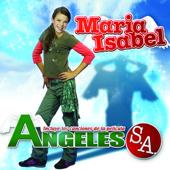 Ángeles S.A., Vol. 1