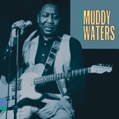 Muddy Waters - Who Do You Trust