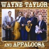 Wayne Taylor And Appaloosa - Dirt Roads