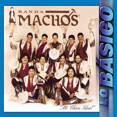 Mi Chica Ideal - Lo Básico - Banda Machos