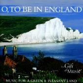 Elgar Edward: Chanson de nuit, op. 15 no 1; New Zealand symphony orchestra 04:21