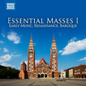 Mass in B Minor, BWV 232: Agnus Dei: Agnus Dei (Alto)