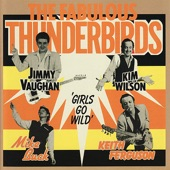 The Fabulous Thunderbirds - Scratch My Back