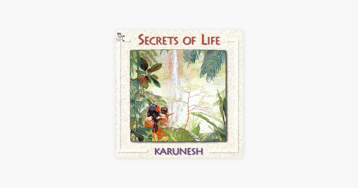KARUNESH SECRETS OF LIFE СКАЧАТЬ БЕСПЛАТНО