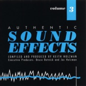 Authentic Sound Effects - Chicken Coop