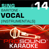 That's Life (Karaoke With Background Vocals) [In the Style of Frank Sinatra]