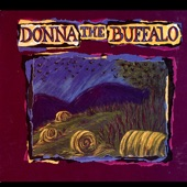 Donna the Buffalo - Push Comes to Shove