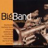 BBC Big Band Orchestra - Big Band Favorites  artwork